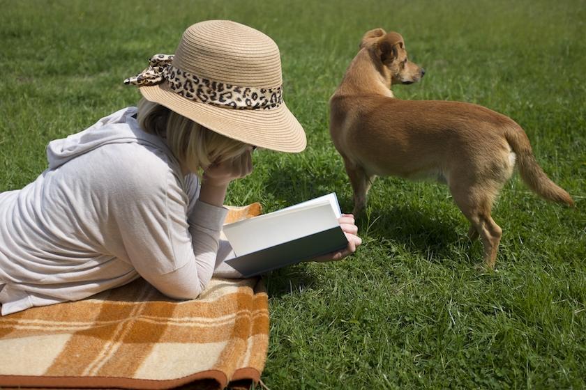 草原で読書をする女性と犬
